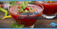 Gazpacho con Mambo