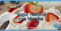 Yogur natural con Mambo